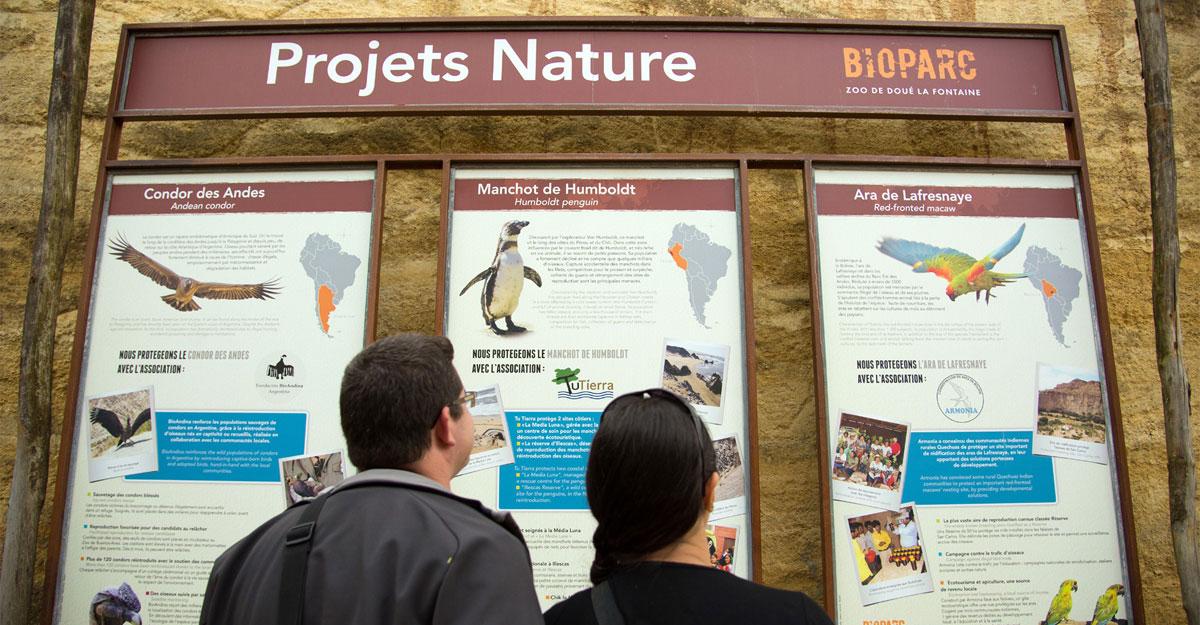 bioparc parc zoologique expo projets nature