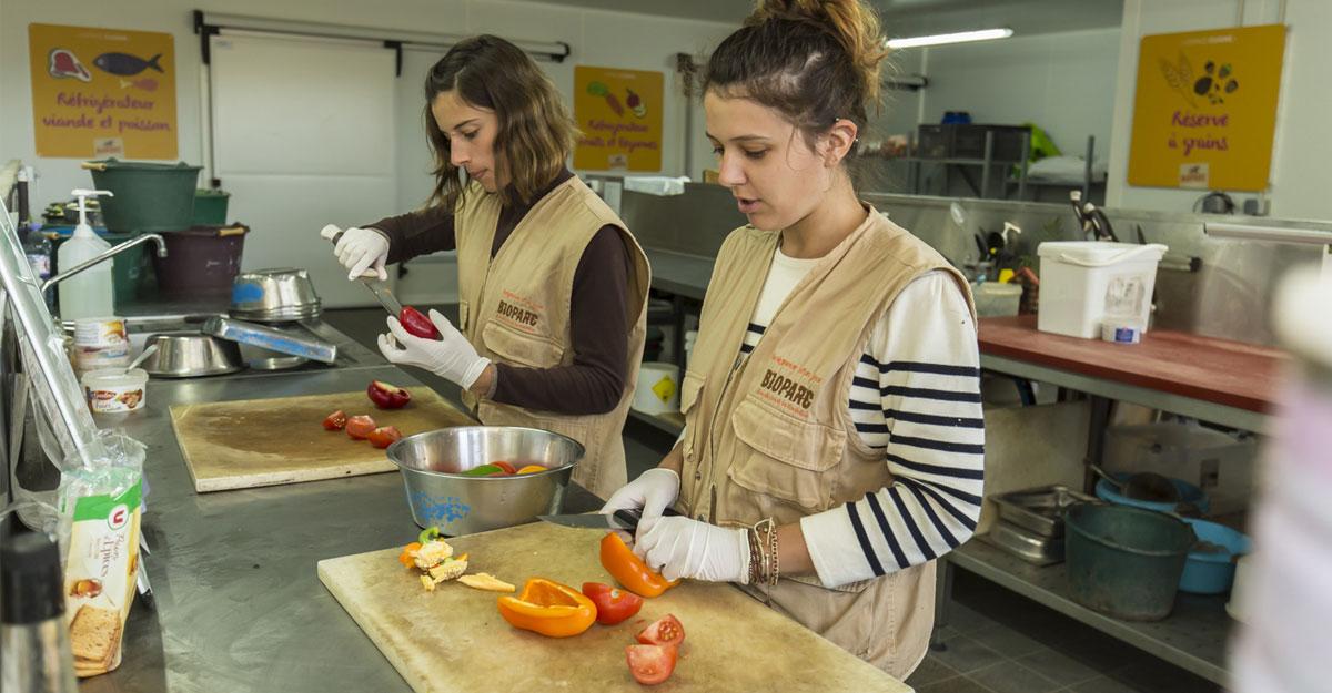 bioparc parc zoologique preparation nourriture animaux