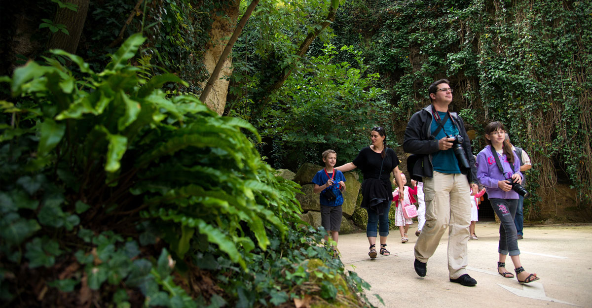 bioparc-parc-zoologique-visite-famille