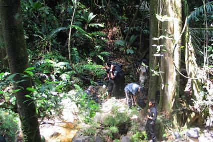 Bioparc-parc-zoologique-projet-nature-tigre-4