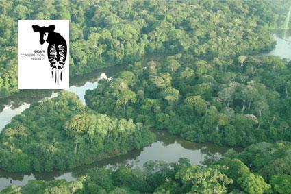 Bioparc-parc-zoologique-projet-nature-okapi-1
