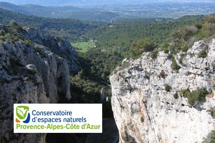 Bioparc-parc-zoologique-projet-nature-percnoptere-2
