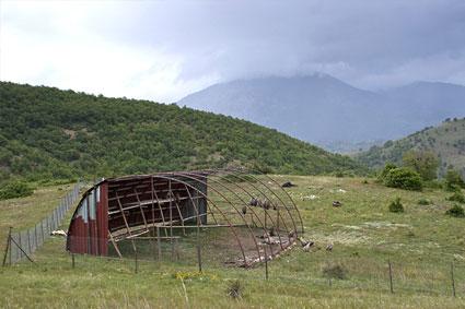 Bioparc-parc-zoologique-projet-nature-vautour_bulgarie-5