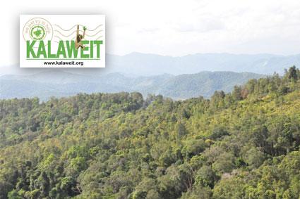Bioparc-parc-zoologique-projet-nature-gibbon-1