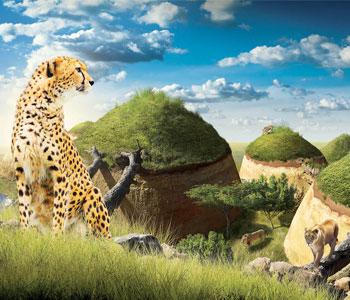 bioparc-parc-zoologique-cratere-carnivores