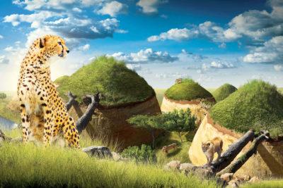 bioparc parc zoologique cratere carnivores