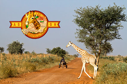 bioparc-parc-zoologique-projet-nature-girafe-niger-ASGN