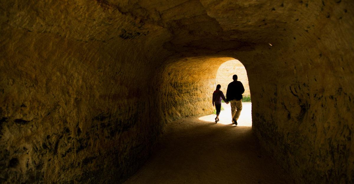 bioparc-parc-zoologique-tunnel-troglo