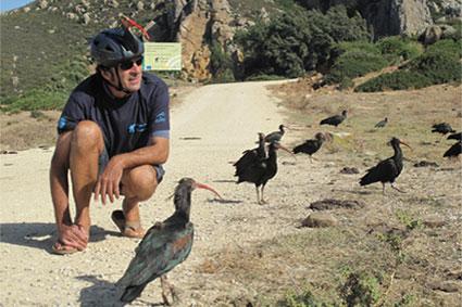 Bioparc-parc-zoologique-projet-nature-ibis-2